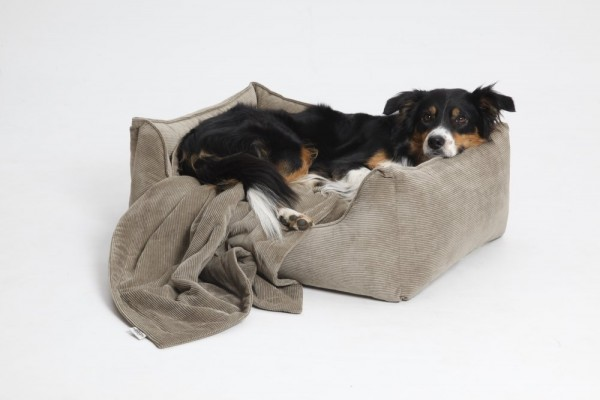 DOGS in the CITY Hundebett Chelsea Cord Sand