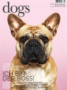 dogs magazin
