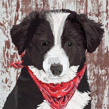 Servietten / Puppy Collie
