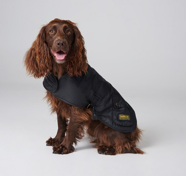 Barbour Hundemantel International Schwarz