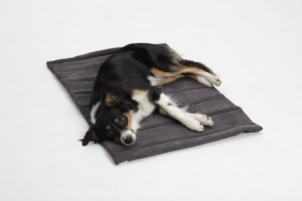 DOGS in the CITY Travel Mat Madison Anthrazit