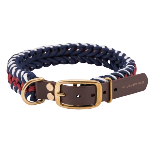 William Walker Paracord Hundehalsband Royal